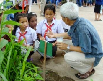 Sombath-school-garden