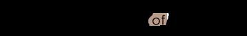 header-logo-print